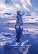commonplace view vol.4