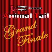 Animal Tail Grand Finale